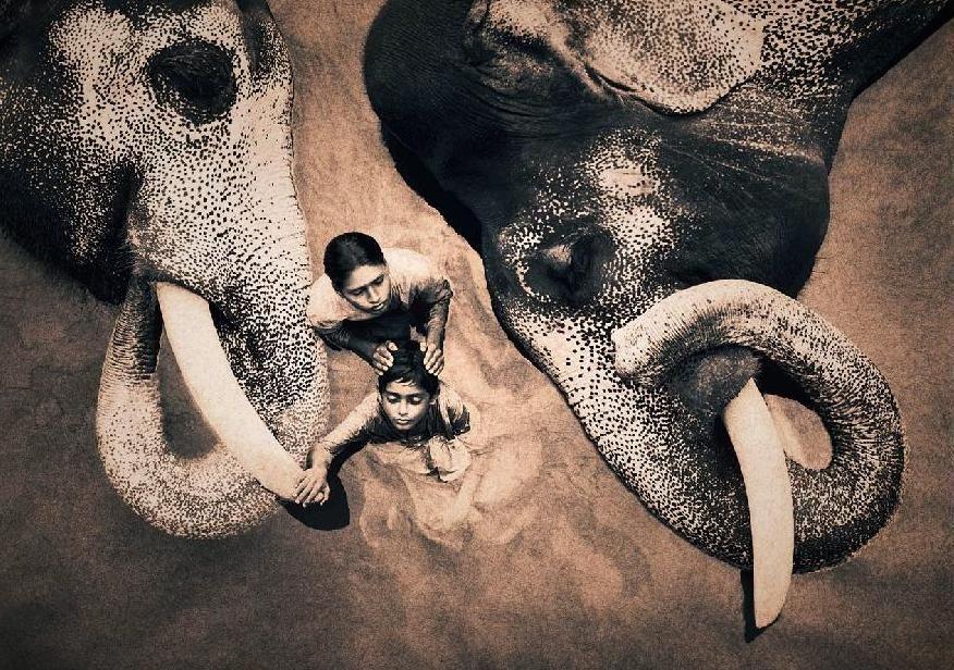 "Потрясающие работы Gregory Colbert ""Ashes and Snow"" (45 фото)"