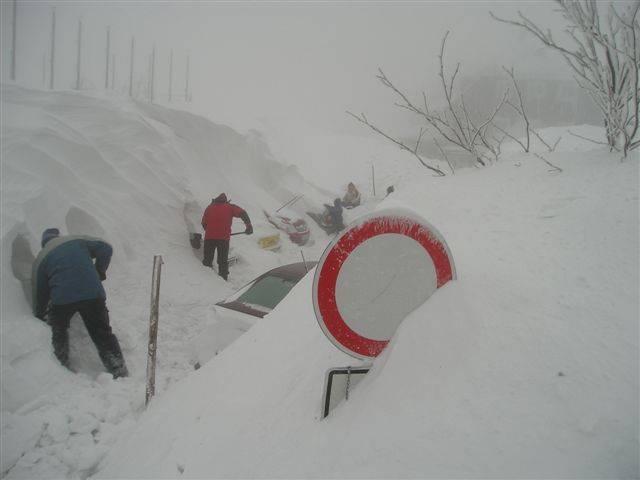 А у нас вчера был легкий снегопадик (10 фото)