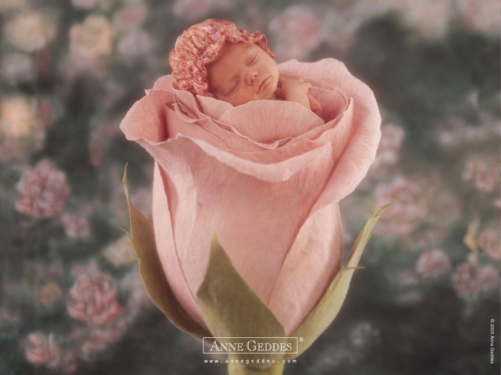 Фото ребенка в цветке