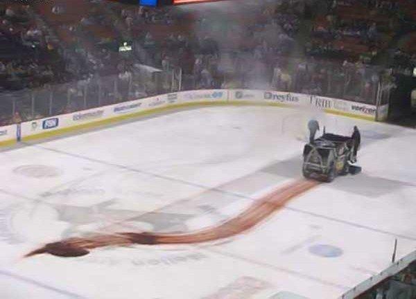 Происшествие во время хоккейного матча (4 фото)