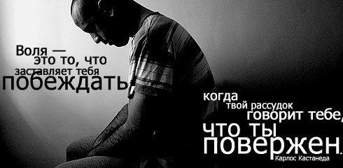 http://ru.trinixy.ru/pics3/20080304/tsitati_02.jpg