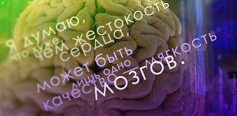 http://ru.trinixy.ru/pics3/20080304/tsitati_29.jpg