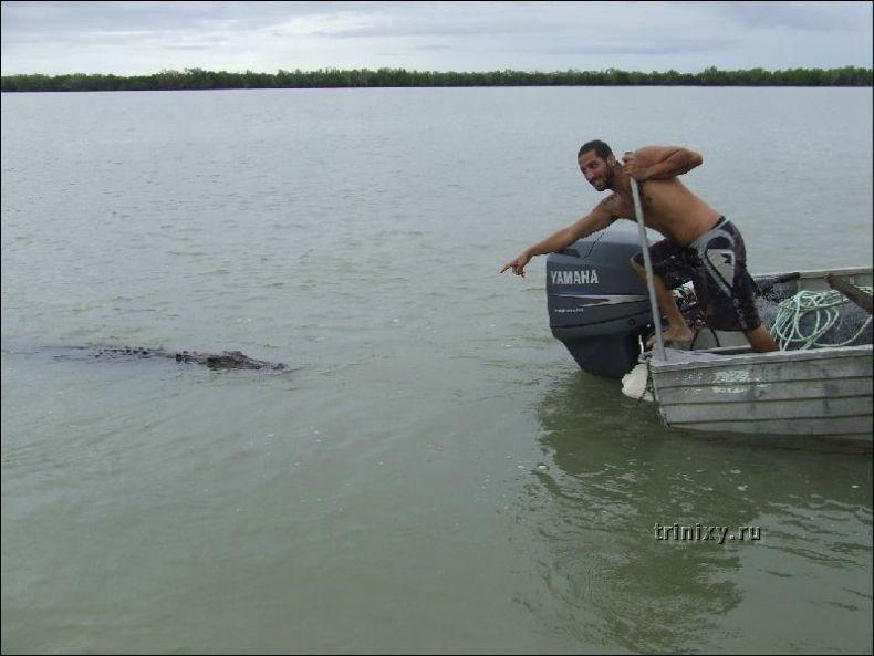 Почему нельзя тыкать пальцами в крокодилов (2 фото)