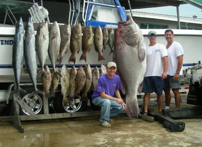 Вот так улов! Огромная рыба (4 фото)