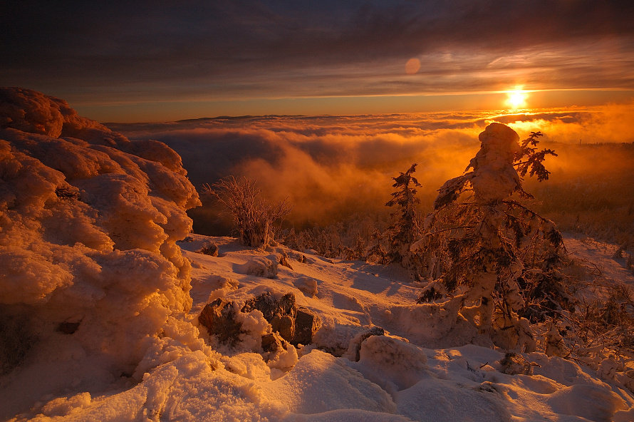 http://cdn.trinixy.ru/pics3/20080327/dusk_05.jpg