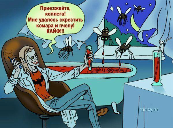 http://de.trinixy.ru/pics3/20080331/vamp_78.jpg