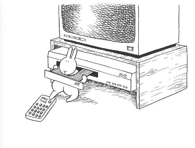 Архивное. Кролики-самоубийцы (63 смерти)