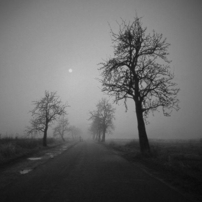 Красивые фото картинки со смыслом черные