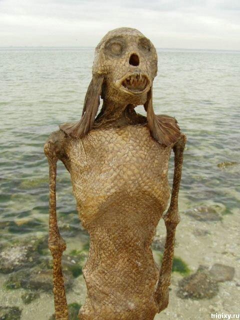 Очередная русалка продается на Ebay (5 фото)