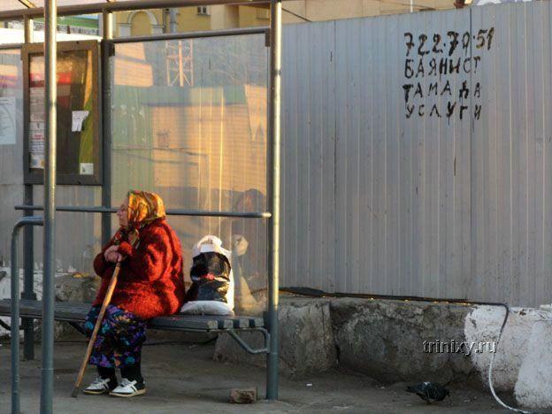 Тамада баянист услуги (100 фото)