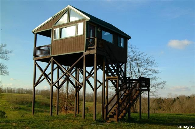 Самый крутой домик для охоты (7 фото)