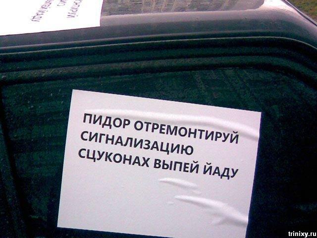 Хозяина вежливо предупредили (3 фото)