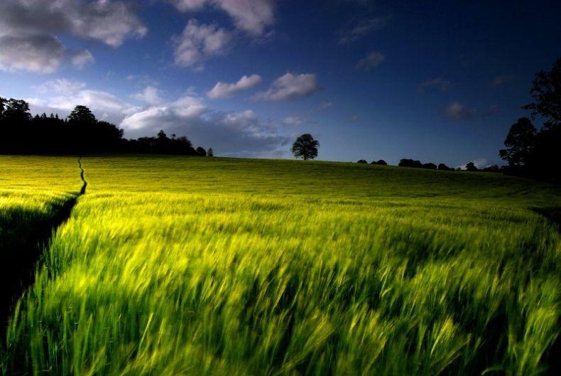 Очень красивые фотографии природы (75 штук)
