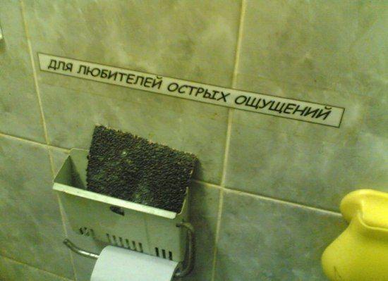 Туалетный юмор (3 фото)