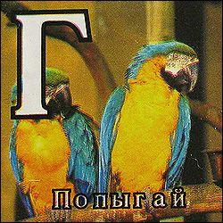 http://ru.trinixy.ru/pics3/20080430/kubiki_02.jpg