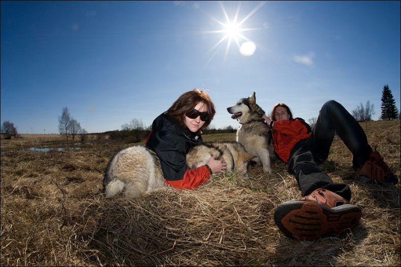Поездка в собачий питомник (18 фото)