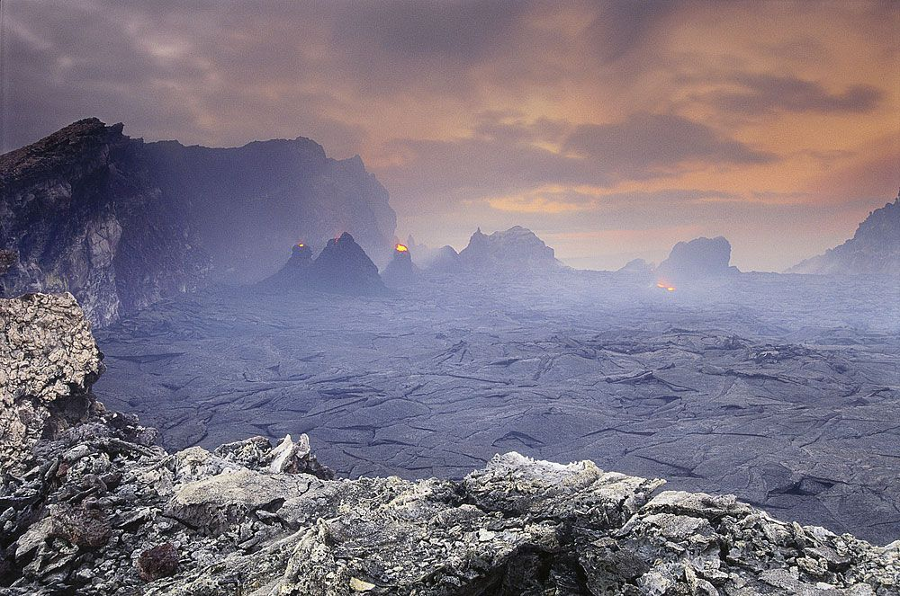 Потрясающие фотографии Frans Lanting (37 кадров)