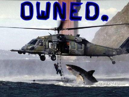 Новые приколы - owned и pwned (109 фото)