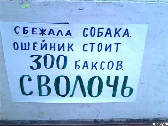 Веселые картинки Podborka_321_31