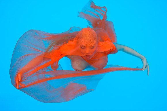Победители Победители Color Awards - 2007 (78 фото)