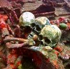 Останки моряков на затонувшем корабле Fujikawa Maru