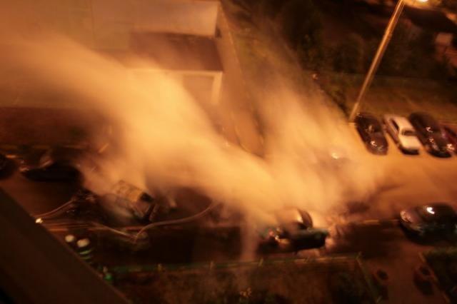 Злодеяния бутовского пиромана (8 фото)