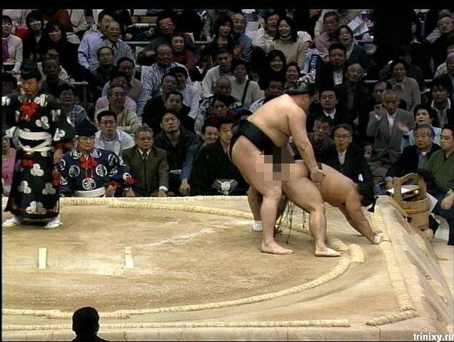 Не порно, но задорно. Пикантное сумо (12 фото)