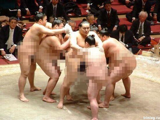 Порно с сюмоистами
