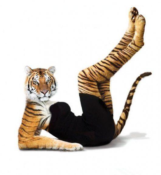 Животные в стиле секси (10 фото)