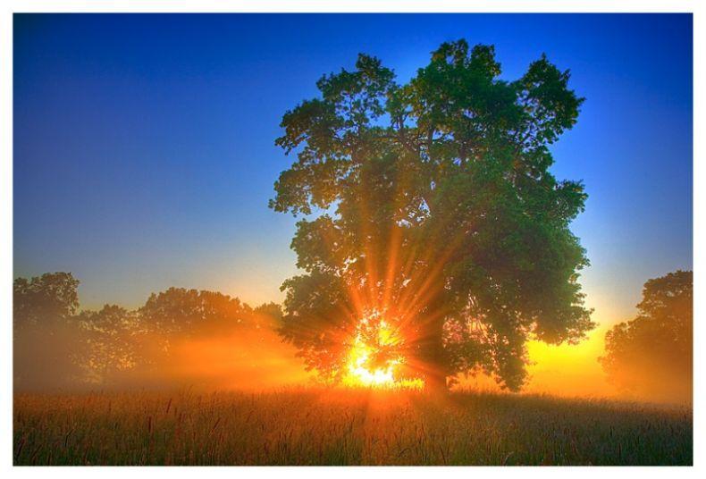 Очень красивые фотографии природы (21 штука)