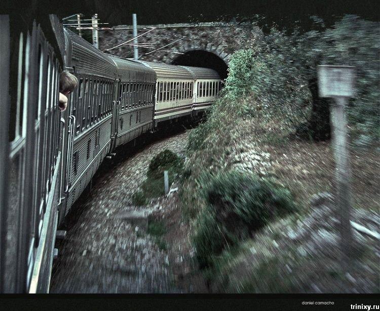 Прикольные картинки (175 фото)