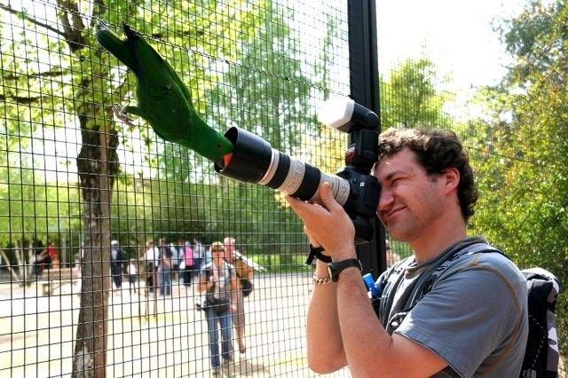 Кое-что о фотографах (30 фото)