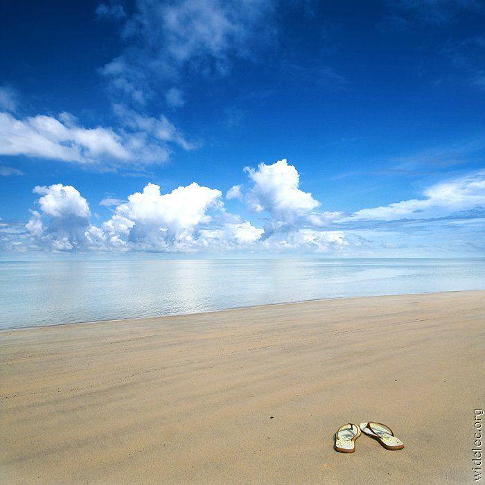 Самые красивые пляжи (23 фото)