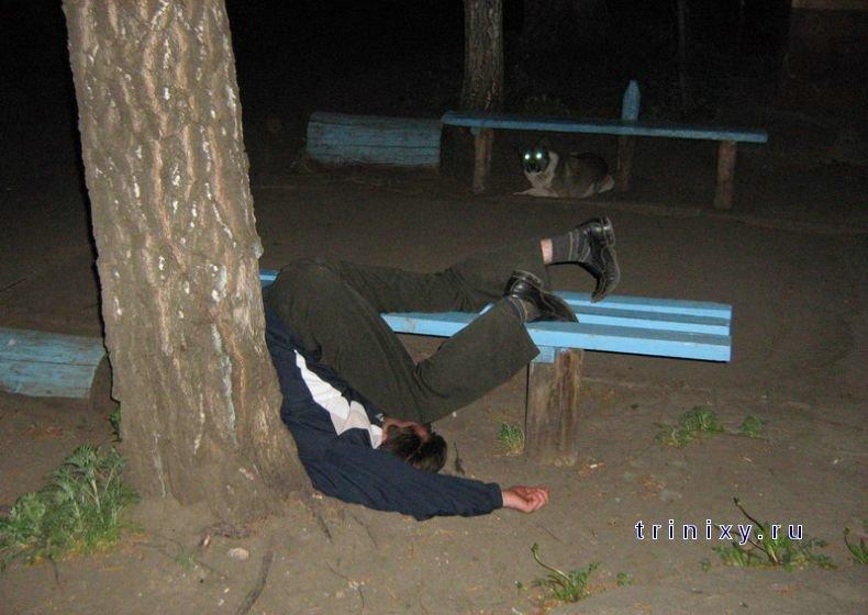Фотографии из жизни. Май-июнь 2008 (81 фото)