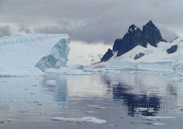 Антарктика и ее обитатели (31 фото)