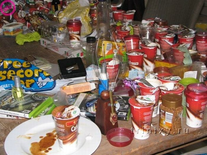 Самая грязная квартира в мире? (8 фото)