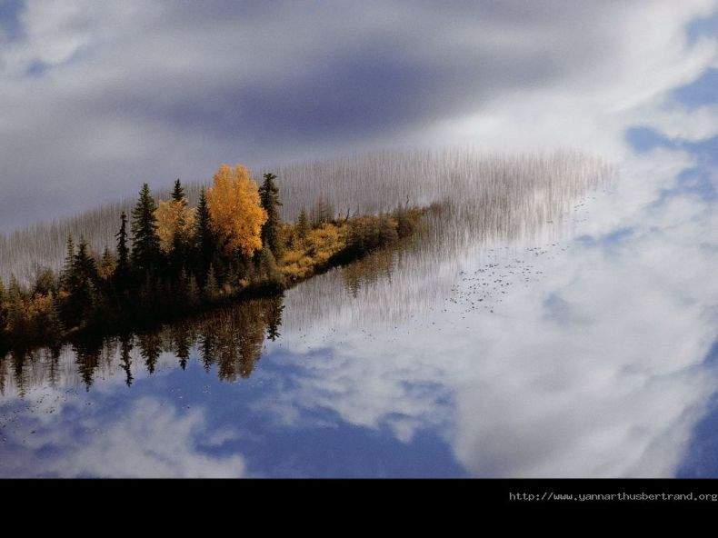 Красивые фотографии, сделанные с высоты птичьего полета (49 штук)