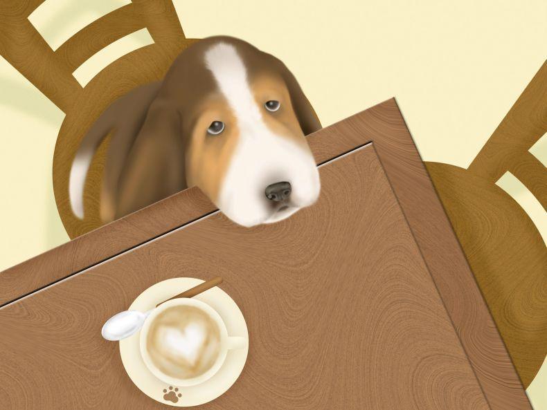 Прикольные картинки с собачками (27 штук)