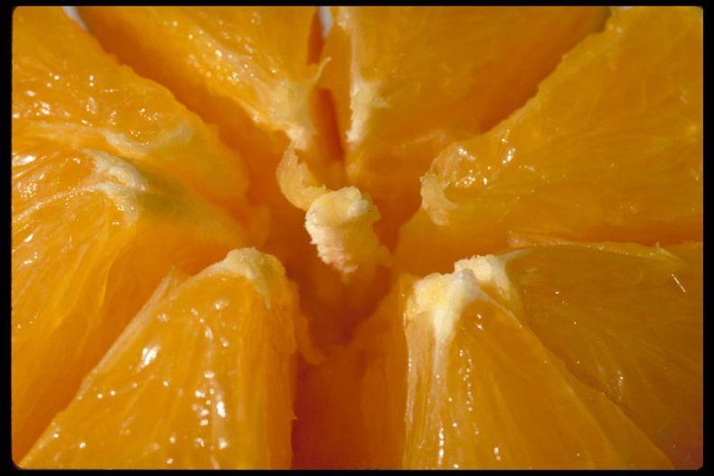 Макрофотографии еды (22 фото)