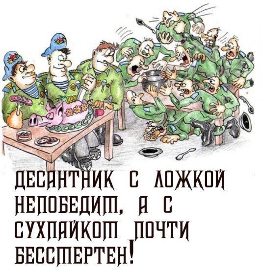 О десантниках с юмором (16 фото)