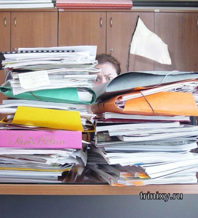 Как нужно себя вести на работе? (21 фото)