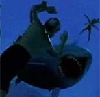 Сражение с акулами