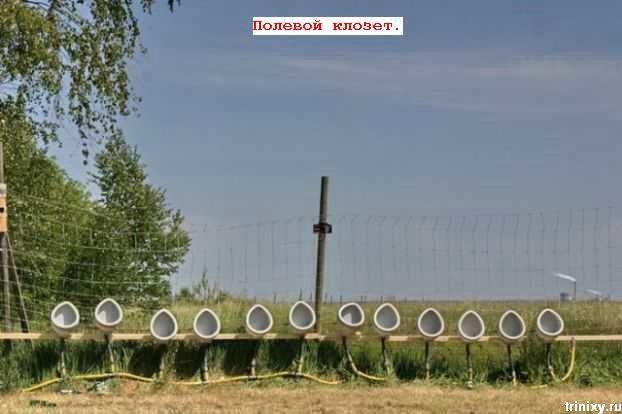 Подборка маразмов за август (74 фото)