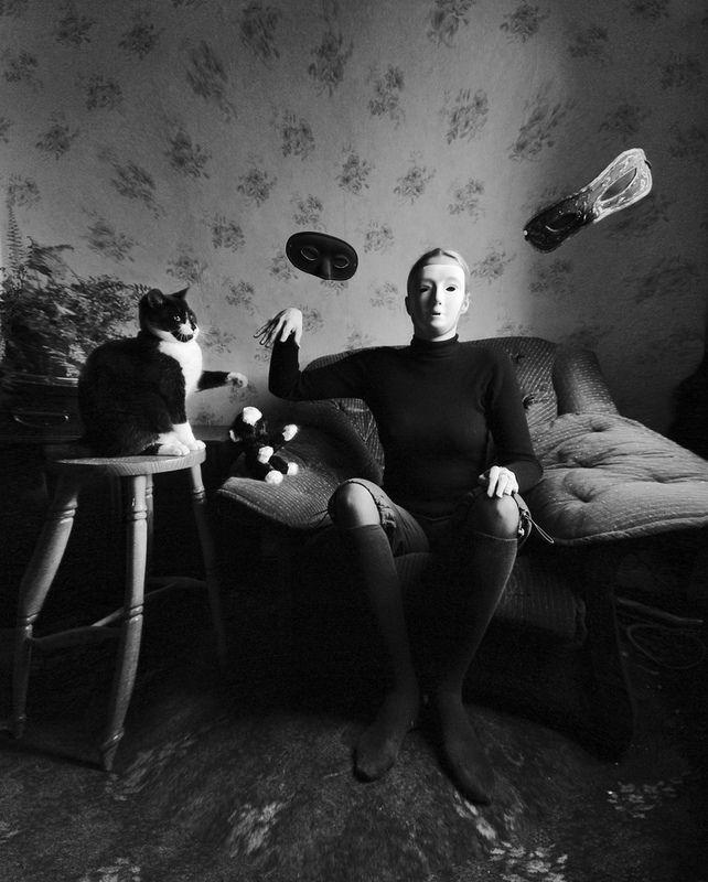 Очень классная фотосессия с котами (23 фото)