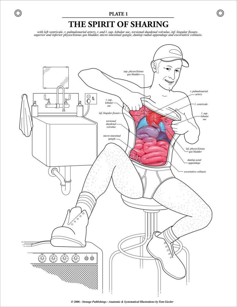 Уроки анатомии от аллы 14 фотография