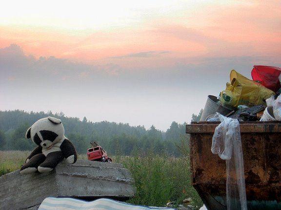 Просто добрая история. Помощь брошенной панде (9 фото)