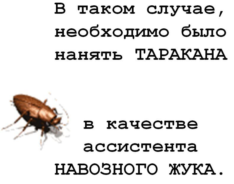 Картинка про муравья и начальников