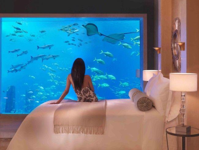 Гостинница Атлантис в Дубаи (17 фото)