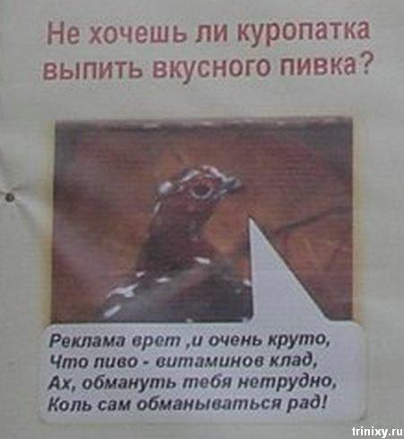 Плакаты в парке (10 фото)