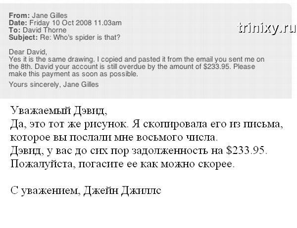 Паучок в виде оплаты (15 картинок + текст)